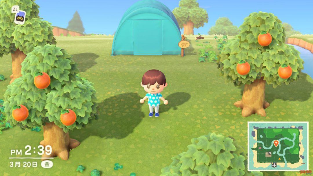 森 星 3 あつ 攻略日記【あつまれ どうぶつの森】評価星3:必要な家具・花・木・住人の数