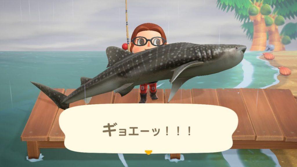 釣り の 方 あつ サメ 森