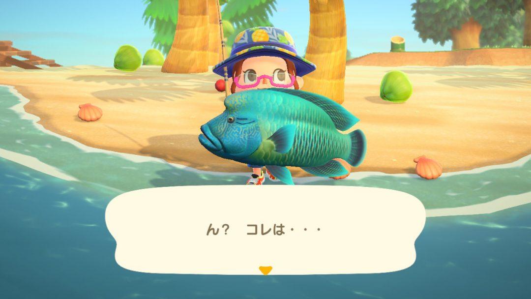 7月からの魚 あつ森